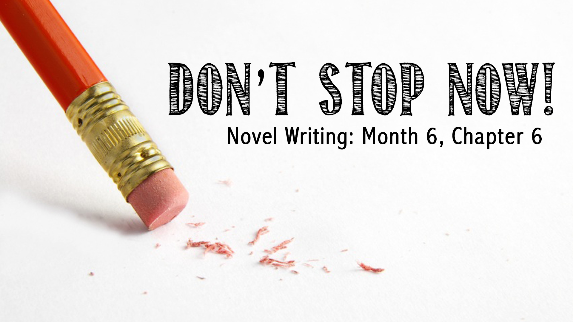 novel writing Turn your idea into a published novel, step by step includes 27 video lessons.