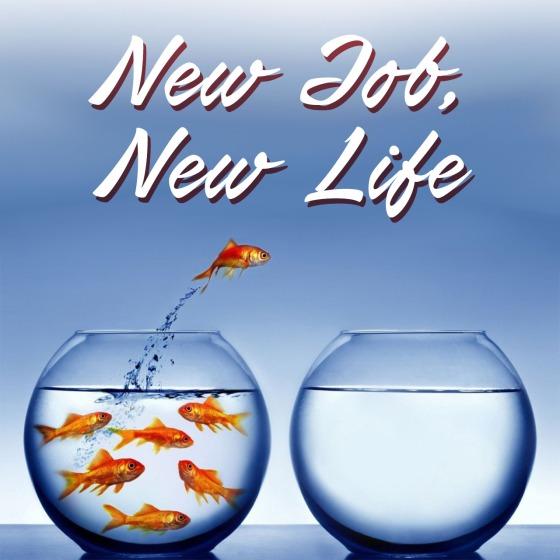 new-job-new-life