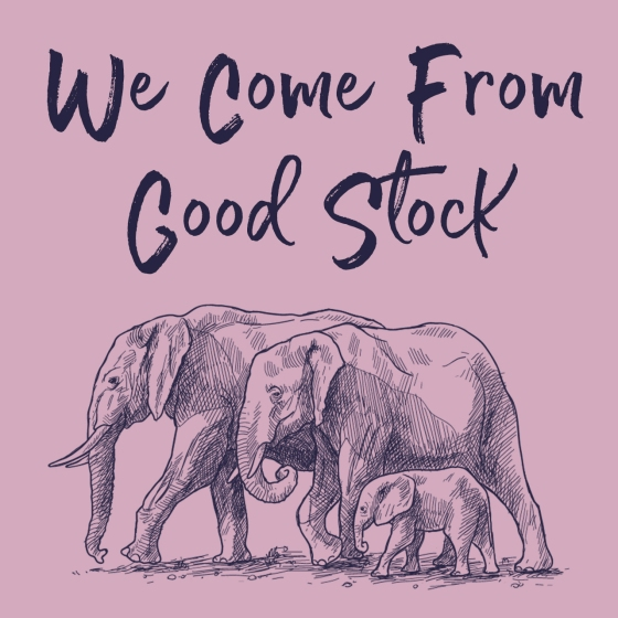 we-come-from-good-stock-1